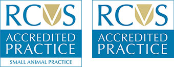 Valentine Vets Are RCVS Accredited